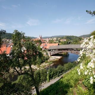Holzbrücke Forbach