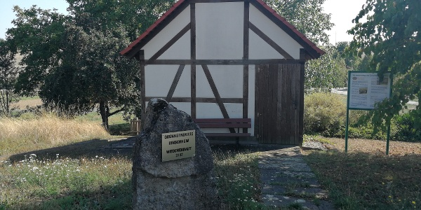 Grünkerndarre an der Rinschbachquelle