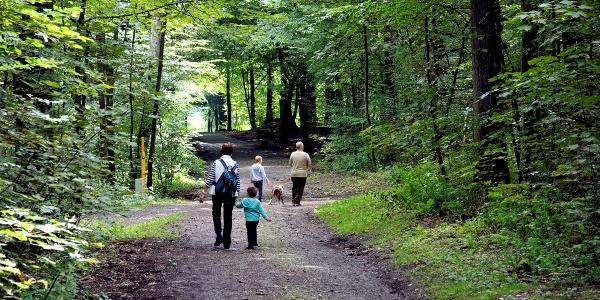 Der Tiergarten in Siegen, einst Jagdrevier des Fürster