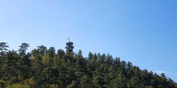 Festetics lookout tower from Nagy-mező