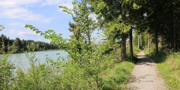 Der Weg führt direkt am Lechufer entlang