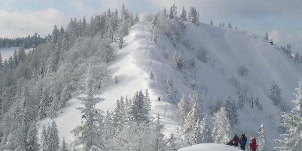 Blick zum verwechteten Kammabschnitt (schneereicher Winter)