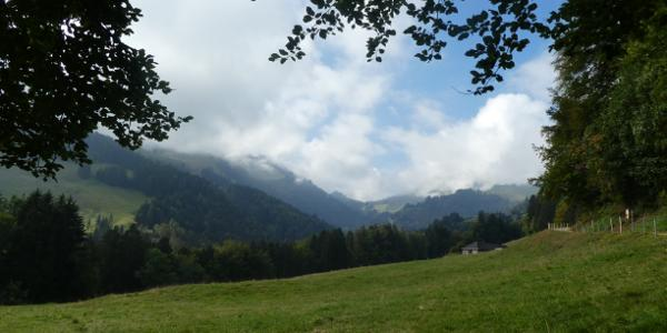 Blick Richtung Petit Moleson