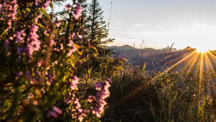 Sonnenaufgang Walmendingerhorn