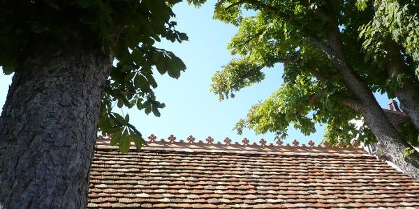 Dachfirst der Historischen Holzkegelbahn in Salem-Weildorf