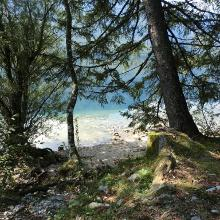 Wanderpfad am See entlang