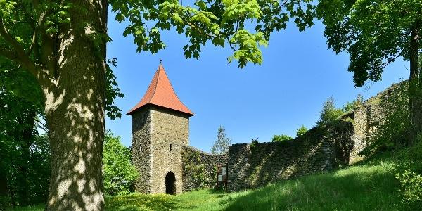 Burgruine Wiedersberg