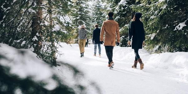Zuger Winterwanderweg