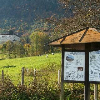 Natur- und kulturhistorischer Wanderpfad Piding
