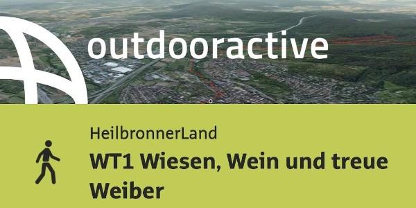 Wanderung im Heilbronner Land: WT1 Wiesen, Wein und treue Weiber