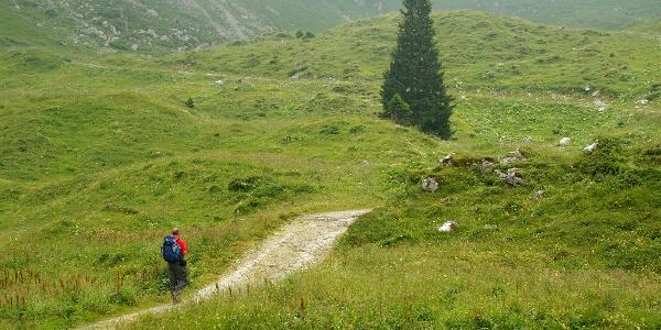 Auf dem Weg von der Wasserscheide zur Alp Obernünenen.