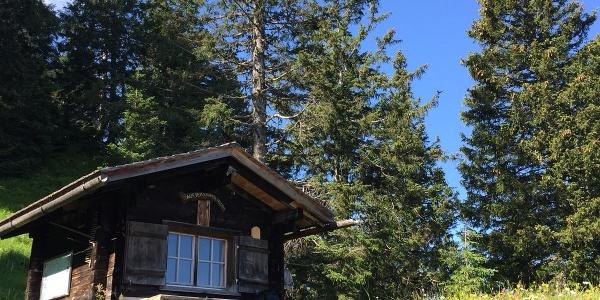Erster Blick auf die Lichtung mit der Krüppelhütte, 1707 m