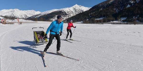 Le plaisir du ski de fond - vers le soleil