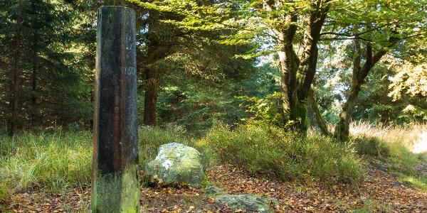 """… zahlreiche Grenzsteine geben Zeugnis davon. Auf der uns zugewandten Seite ist das """"B"""" (Belgien) eingemeißelt, auf der Rückseite das """"P"""" (Preußen)"""