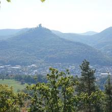 Foto von Wanderung: Annweiler - Kaiser-Friedrich-Weg • Pfalz (09.10.2018 10:00:35 #1)