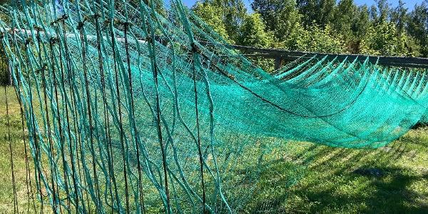Kalastusverkot Kaskisten vanhassa kalasatamassa