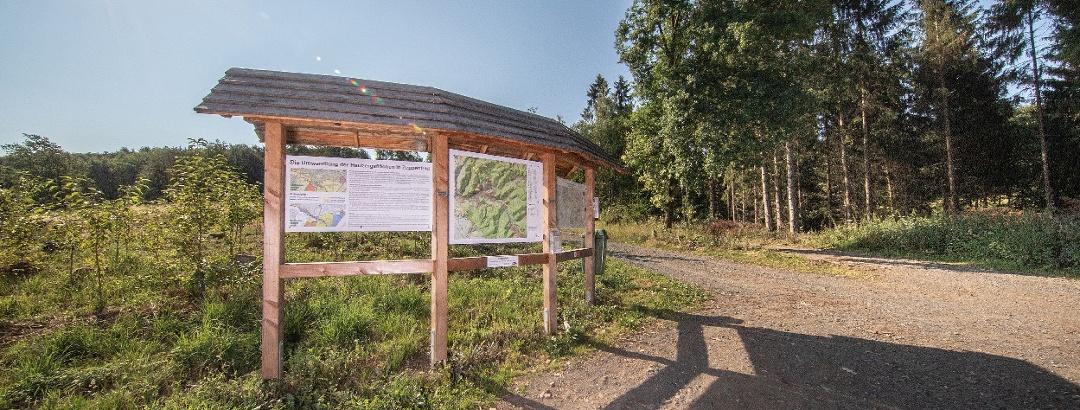 Wanderportal Neunkirchen-Zeppenfeld Auf der Eierecke