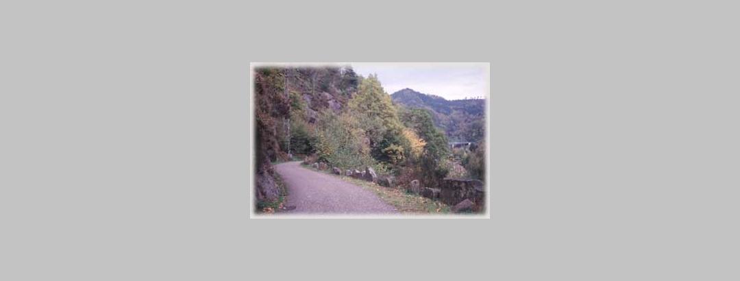 Der Murgtalwanderweg unterhalb des Füllenfelsens
