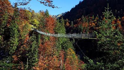 Hängebrücke Leiternweide.