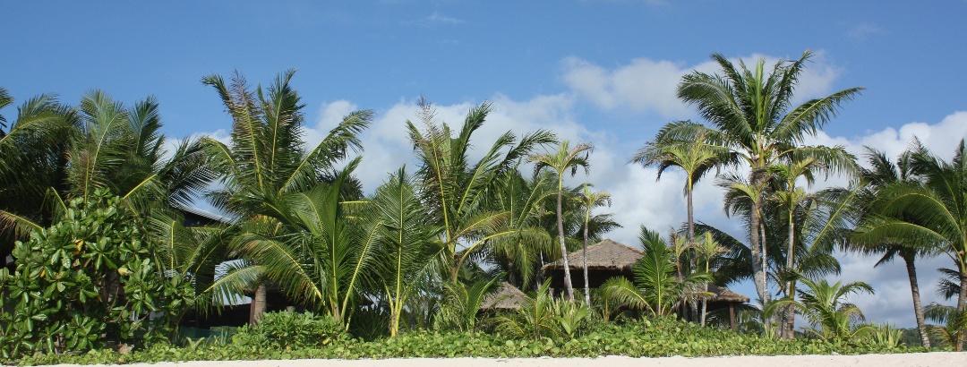 Sandy beach, Guam