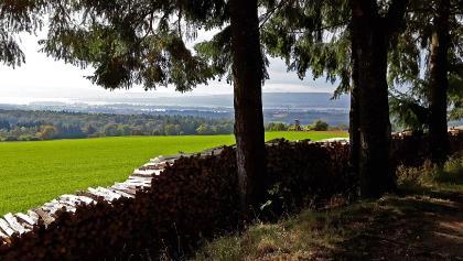 Aussicht vom Mühlsberg auf Radolfzell und Mettnau