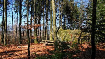 Findling «Hubelstei» bei Lüterswil.