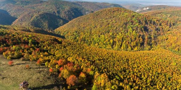 A Bükkszentkereszti-kilátó egy őszi drónfelvételen