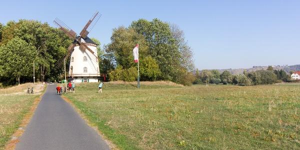 Kilometer 7:  Elberadweg bei der Gohliser Windmühle. Im Hintergrund die Radebeuler Weinberge