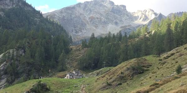 Alpe di Sfii