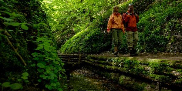 Wanderer unterwegs in der Landgrafenschlucht