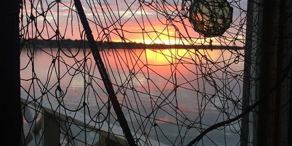 Näkymä merelle Kaskisten Kalarannan Vanhan Savustamon ikkunasta