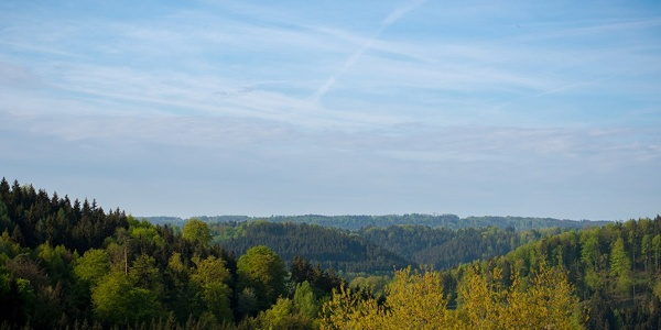 Blick ins Irsbachtal