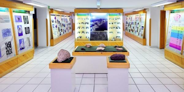 Muzej-neživa narava TNP