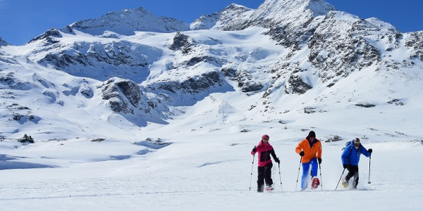 Snowshoe trail Alp Bondo