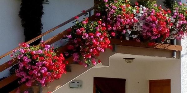 Apartma pod Rožem