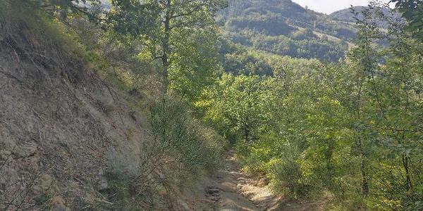 Abstieg nach Rocca San Sasciano