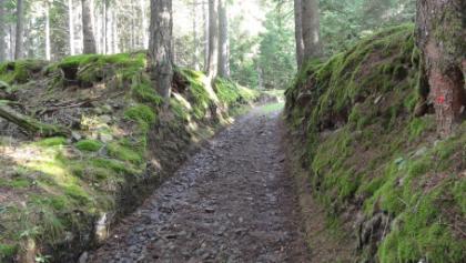 Lärcheneggweg
