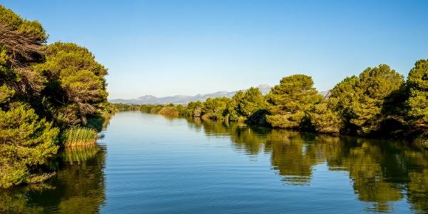 S'Albufera Natural Park