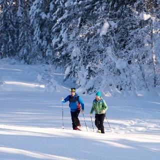 Schneeschuhwanderung auf die Auer Wiesen