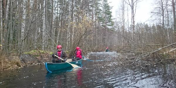 Melontareitti Jängänjärvi - Loukkukoski, Perho