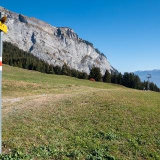 Höhenweg Foppa - Scheia - Fidaz - Flims