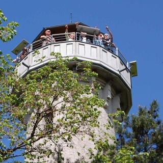 Aussichtsplattform des König-Albert-Turmes