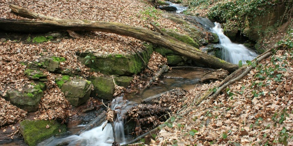 Vízesés az Éger-völgyben