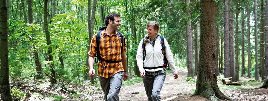 Hiking in the Harz
