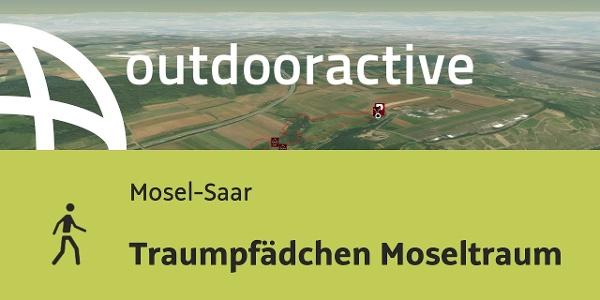 Wanderung in Mosel-Saar: Traumpfädchen Moseltraum