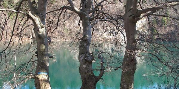 Lago di Lamar – Terlago