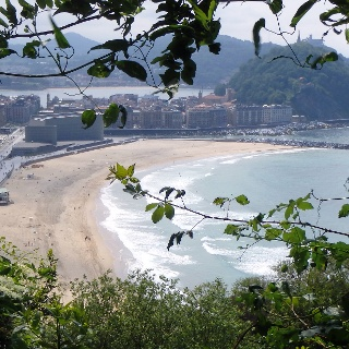 San Sebastián: Arbola Pasealekua