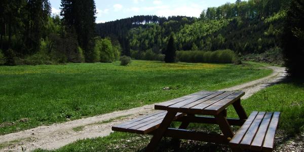 Wadrilltal bei Reinsfeld