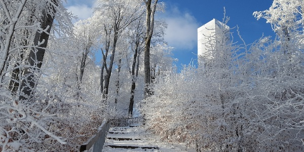 Galya  lookout tower in winter