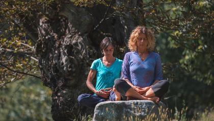 Meditazione al castagneto di Carisolo